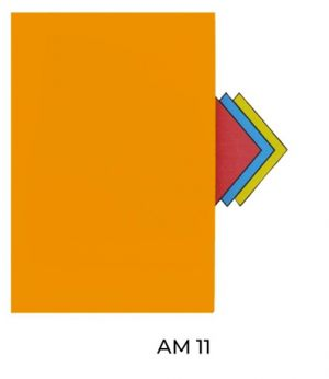AM11(2)
