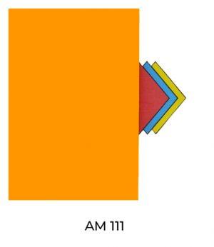 AM111(1)