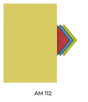 AM112(2)