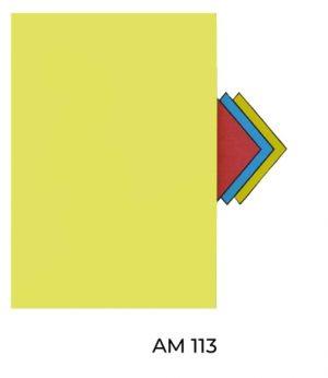 AM113(2)