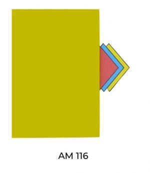 AM116(1)
