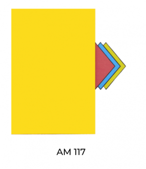 AM117