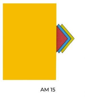 AM15(1)