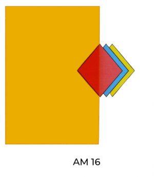 AM16(1)