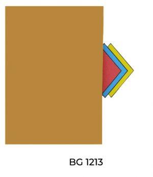 BG1213(1)