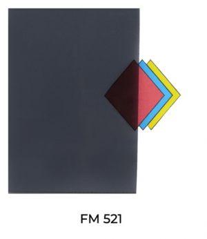 FM521