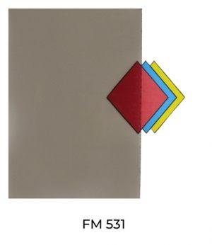 FM531