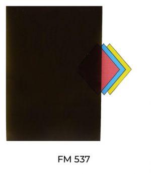 FM537