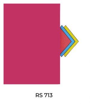 RS713(1)