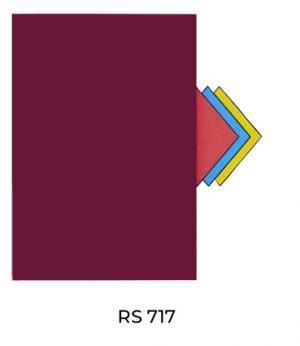 RS717(1)
