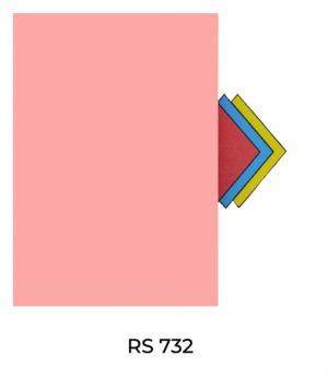 RS732(1)