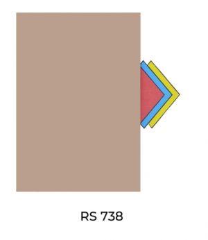 RS738(1)