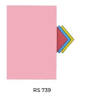 RS739(1)