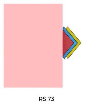 RS73(2)
