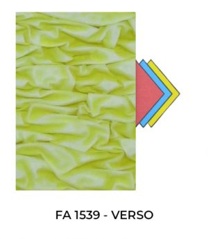 FA1539-VERSO