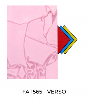 FA1565-Verso