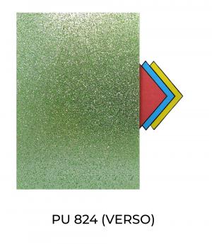 PU824-Verso